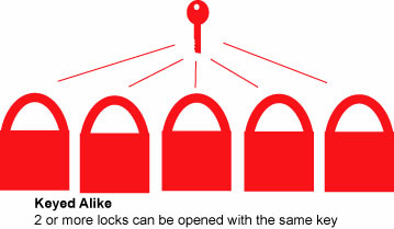 infographic of keyed alike keying option
